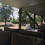 響蜜鴷野生動物園營地帳篷小屋照片
