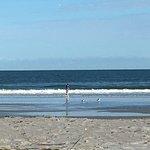Фотография La Fiesta Ocean Inn & Suites