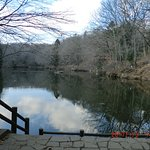 湖の中央から北西側を見た風景