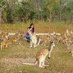 Nina's Ark Wildlife Sanctuary