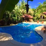 Photo de Hotel Ritmo Tropical