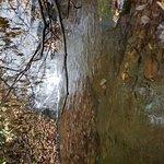 Fire Creek Falls