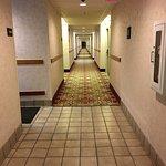 Hampton Inn Brevard Foto