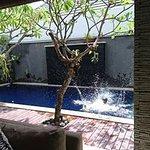 Wolas private pool fun