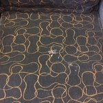 Photo de Econo Lodge near Suncadia Resort
