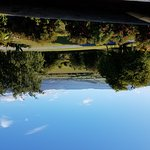20161220_080709_large.jpg
