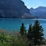 Photo of Bow Lake