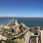 Granite Island - Victor Harbour Foto