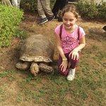 child and tortoise 1