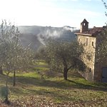 Photo of Podere Spedalone