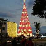 Christmas Lights in Funchal