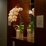 Photo de St. Regis Hotel