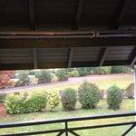 Belle terrasse équipée de néons :-(