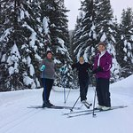 The cross country skiing trails are beautiful. The snow-covered lodgepole pines are spectacular.