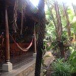 Photo de Hostel Oasis