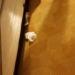We moved skirt and there was a pair of socks on floor in room 310