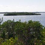Foto de Pelican Island National Wildlife Refuge