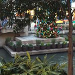 Christmas tree at River Center