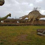 Welt der Reptilien / Word of reptiles