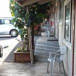 Foto de Surf Motel and Gardens