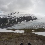 Looking at Exit Glacier from Above.
