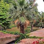 Foto di Hotel Villa Ottone