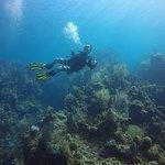 West End Divers Foto