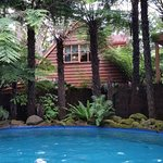 view of cabin from pool.