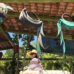 Foto de Los Arroyos Verdes