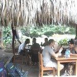 Photo of Nectar-Cafe. Santa Cruz