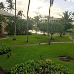 View from the Lanai looking toward the lagoon. Note the Chickens!