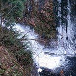 Holland Creek Hiking Trails Foto
