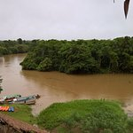 Amazon Rainforest Lodge-billede