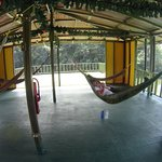 Jungle Land Panama: Day Excursions Foto
