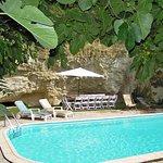 Château de Ternay, la piscine