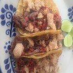 Photo of Cucara Macara