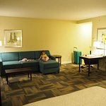 Hampton Inn & Suites Orlando - South Lake Buena Vista Resmi