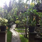 Nicks pension is one of my favourite hotels in Ubud,very peaceful, great gardens, excellent loca