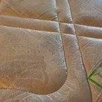 mattress filthy