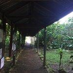Foto de Chilamate Rainforest Eco Retreat