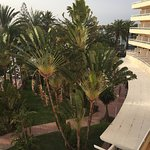 Photo of Hotel Riu Palmeras / Bung Riu Palmitos