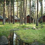 Five Pine Lodge & Spa รูปภาพ