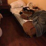 Suciedad, arañas y cama plegatin rota