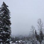 Birch Meadows Lodge B&B Foto
