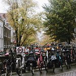Photo de Babylon Tours Amsterdam