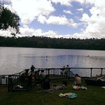 Lake Eacham - a volcanic crater lake. Ideal for family picnics, b-b-q's, swimming