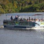 Tour ecologici