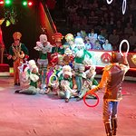 Nikulin-Zirkus Foto