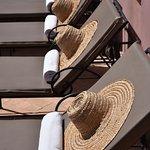 Sun beds on the terrace