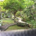 Jardin autour de la kaz